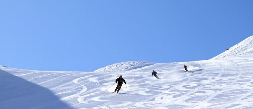 france_les-2-alpes_ski-et-snowboard.jpg